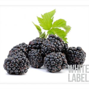 White-Label_Product-Pic_Blackberry