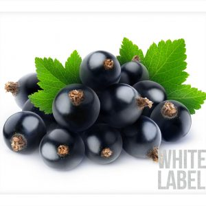 White-Label_Product-Pic_Blackcurrant
