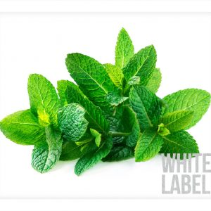 White-Label_Product-Pic_Spearmint