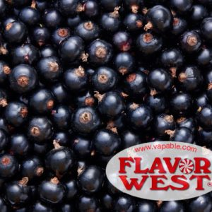 Flavor West Blackcurrant Flavour Concentrate